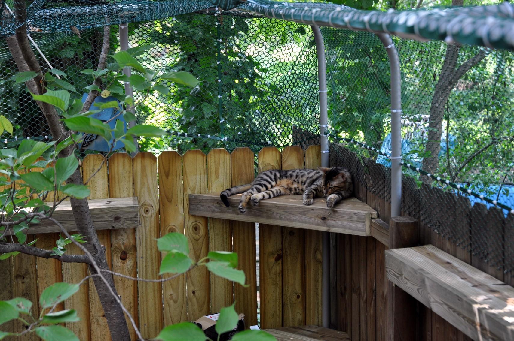 Patio Enclosures Ideas Solarium Pictures Photos And